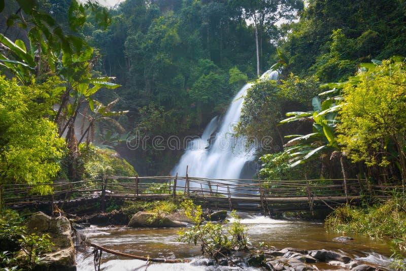 Cachoeira bonita em Tailândia do norte, wate de siew do dok de Pha do nome foto de stock