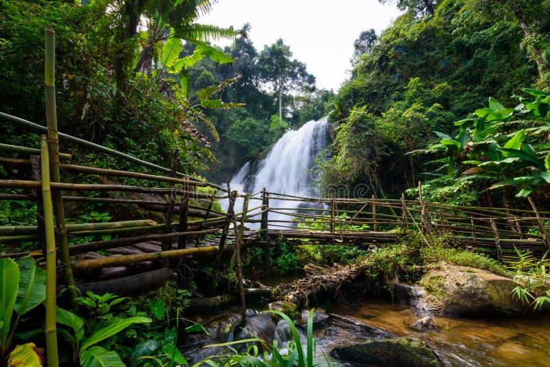 Cachoeira bonita em Tailândia do norte, wate de siew do dok de Pha do nome fotografia de stock