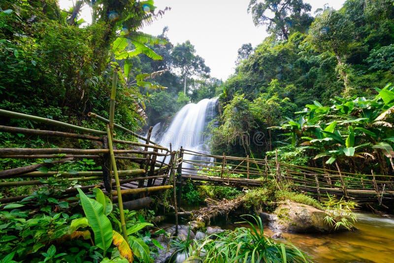 Cachoeira bonita em Tailândia do norte, wate de siew do dok de Pha do nome fotos de stock royalty free