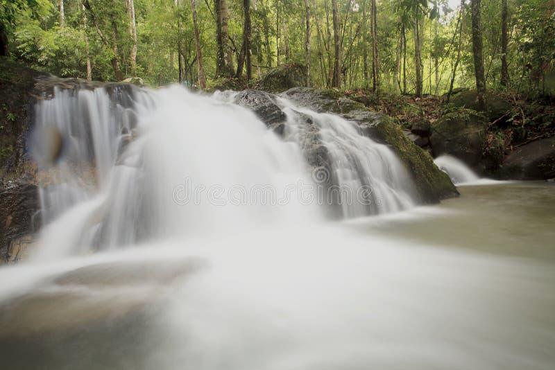 Cachoeira bonita em uma floresta na estação do outono fotografia de stock royalty free