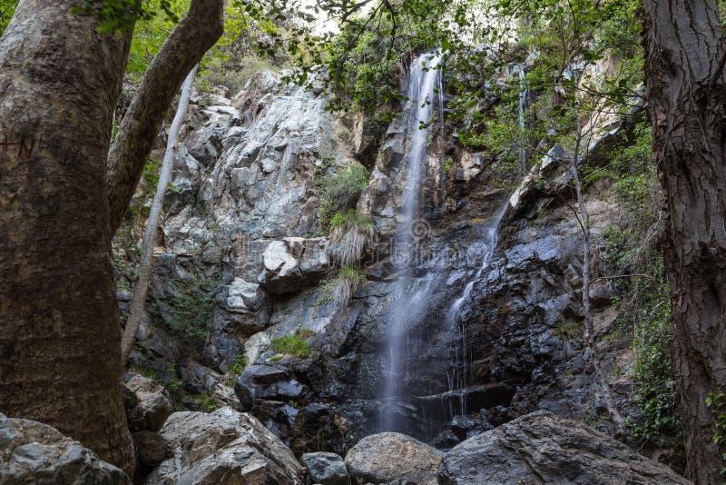 Cachoeira bonita na floresta Chipre imagem de stock