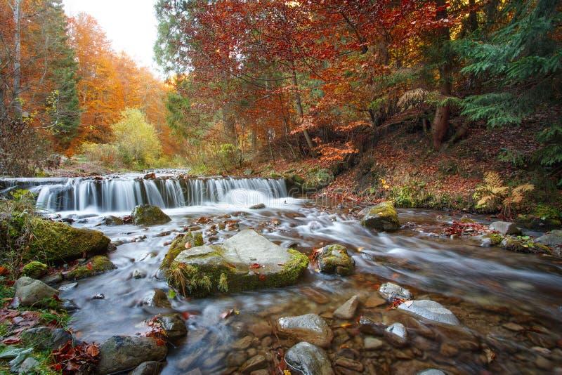 Cachoeira bonita na floresta, paisagem do outono imagem de stock royalty free