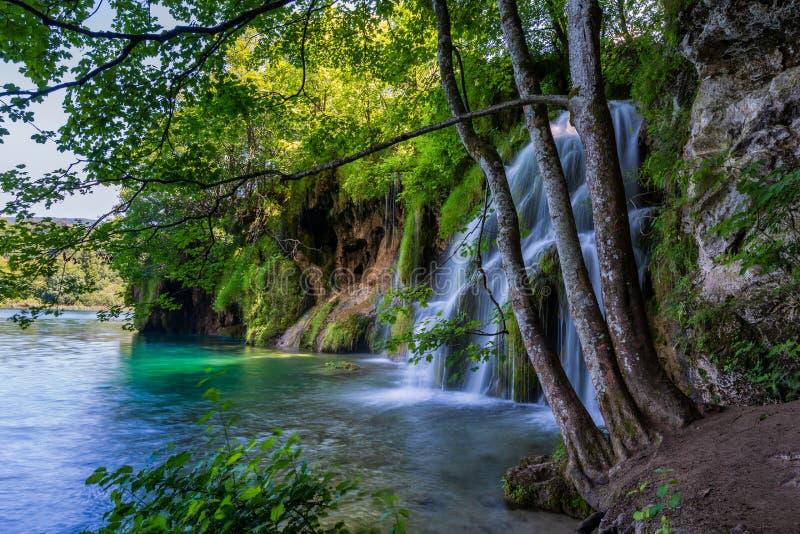 Cachoeira bonita no parque nacional dos lagos Plitvice, Cro?cia foto de stock royalty free