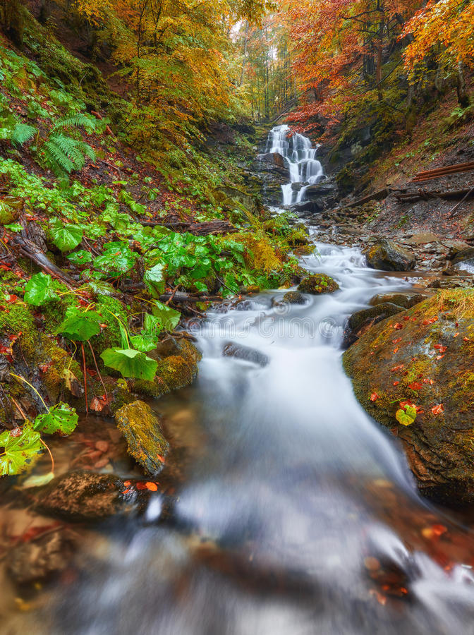 Cachoeira bonita no rio da montanha na floresta colorida do outono imagens de stock royalty free
