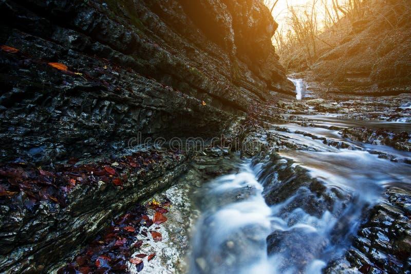 A cachoeira bonita no rio da montanha na floresta colorida do outono com vermelho e a laranja sae no por do sol Paisagem da natur imagem de stock
