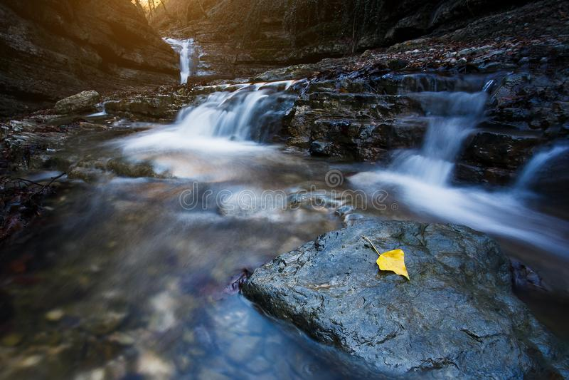 A cachoeira bonita no rio da montanha na floresta colorida do outono com vermelho e a laranja sae no por do sol Paisagem da natur fotos de stock