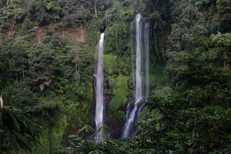 Cachoeira bonita Sekumpul de Sekumpul na floresta profunda em Bali, Indonésia foto de stock