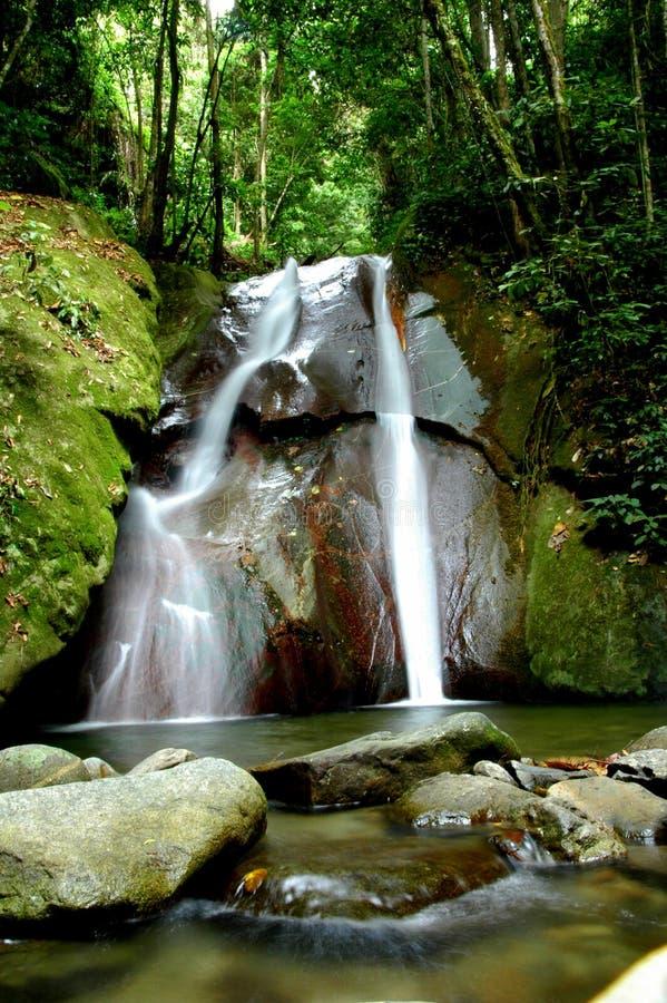 Cachoeira cénico da floresta fotografia de stock royalty free