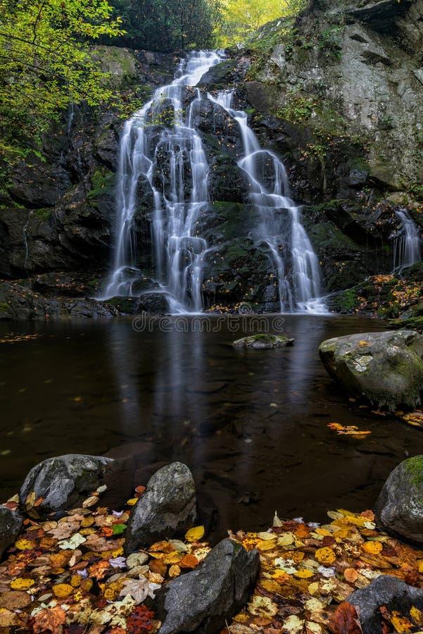Cachoeira cênico, Great Smoky Mountains imagem de stock