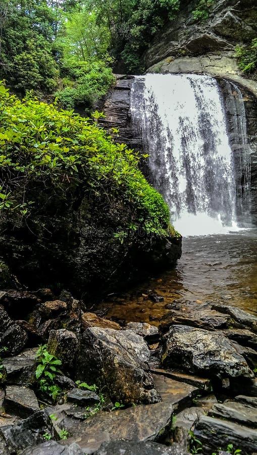 Cachoeira calma após uma chuva do verão no meio de América fotos de stock royalty free