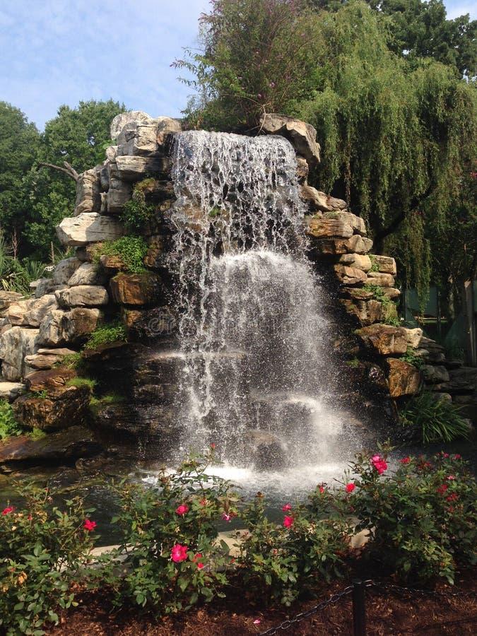 Cachoeira com flores fotos de stock