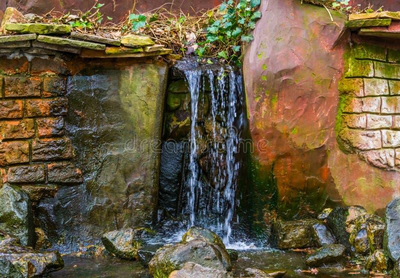 Cachoeira com ribeiro em um jardim, decorações do quintal, fluindo a água foto de stock