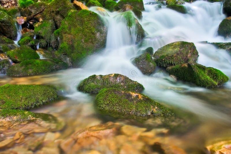 Cachoeira cremosa nas florestas de Macedónia foto de stock