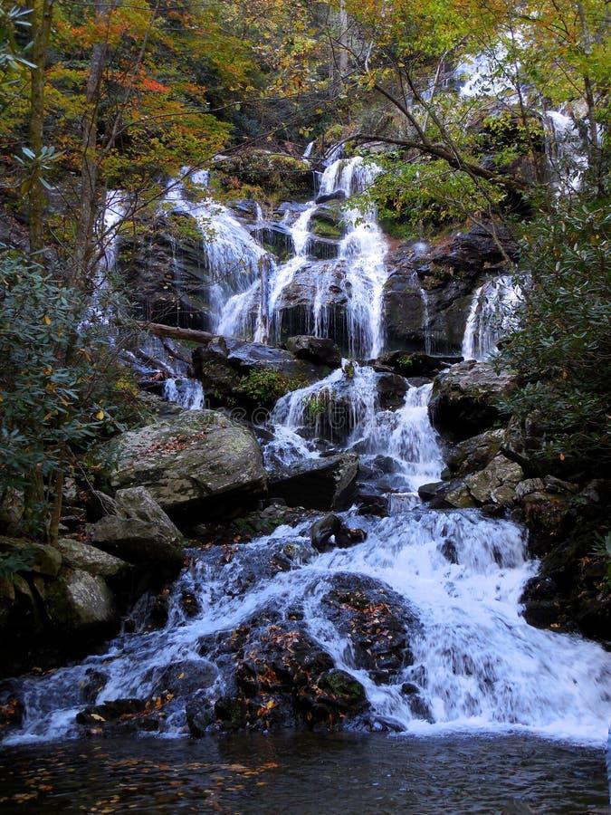 Cachoeira da angra do rio da montanha na queda fotos de stock royalty free