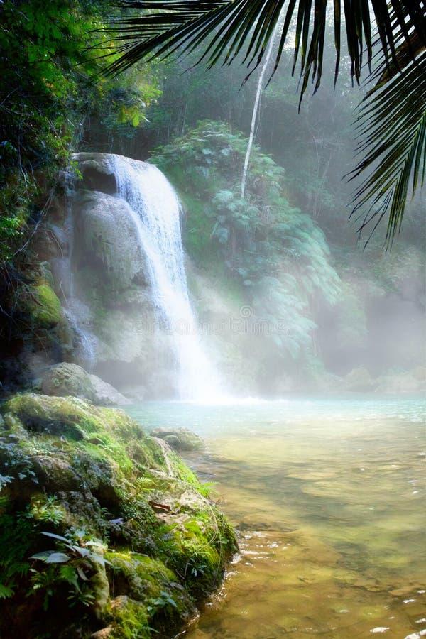 Cachoeira da arte em uma floresta úmida tropical densa foto de stock