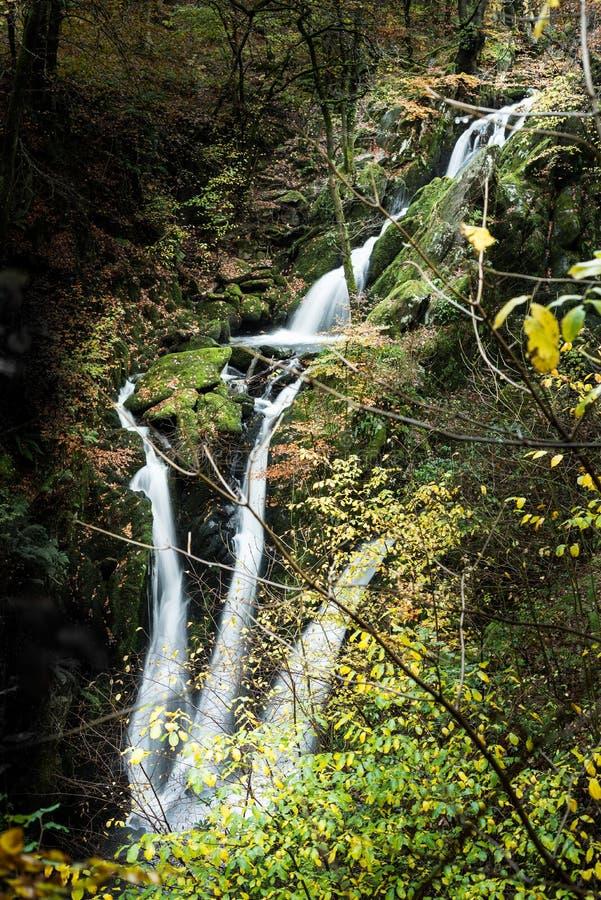 Cachoeira da força de Stockghyll imagens de stock royalty free