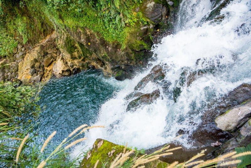 Cachoeira da névoa de México Xico Veracruz a mais forrest fotos de stock
