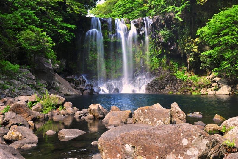 Cachoeira de Cheonjiyeon no console de Jeju imagem de stock royalty free