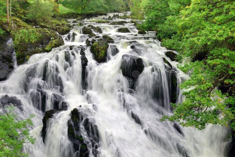 Cachoeira de conexão em cascata fotografia de stock