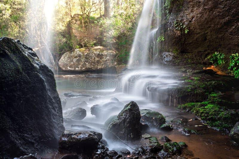 Cachoeira de conexão em cascata no bushland australiano bonito imagens de stock royalty free