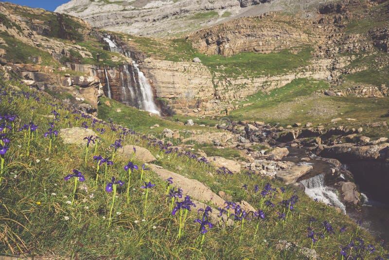 Cachoeira de cotatuero sob Monte Perdido no vale Arag de Ordesa fotos de stock royalty free