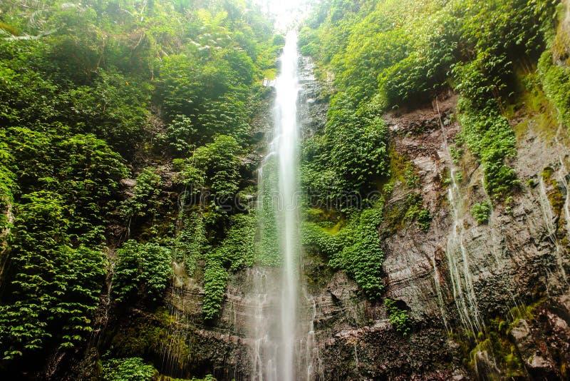 Cachoeira de Lawe fotografia de stock royalty free