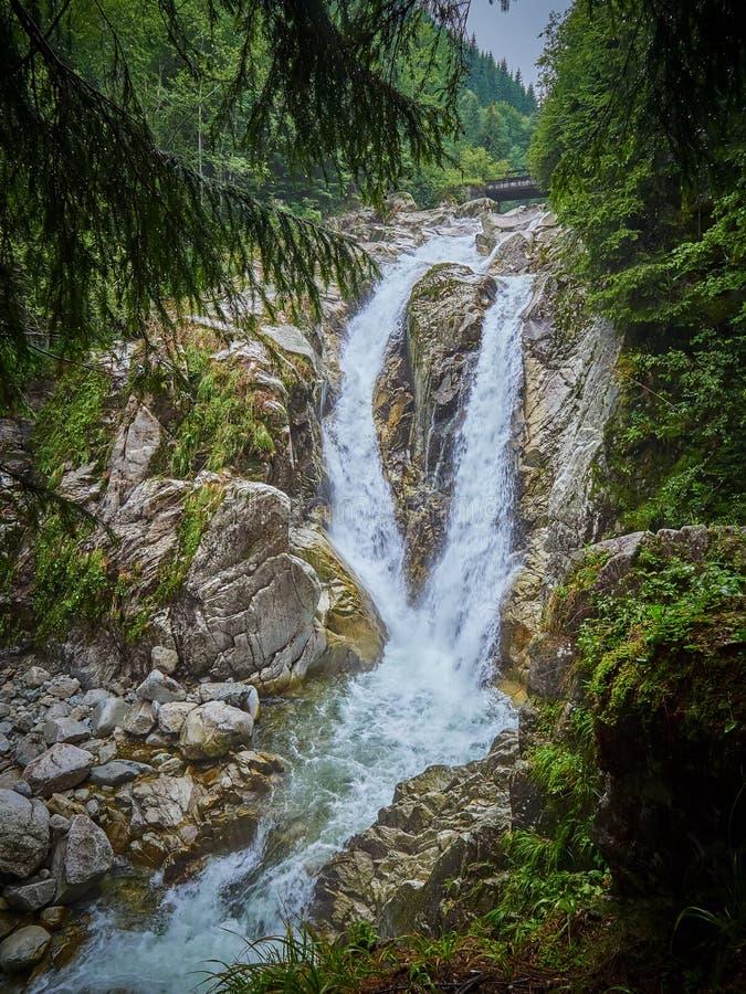 Cachoeira de Lolaia no parque nacional Retezat, Romênia fotos de stock