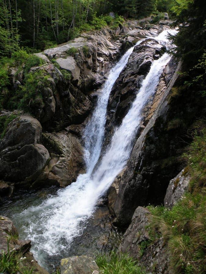 Cachoeira de Lolaia, parque nacional Retezat, Romênia fotos de stock royalty free