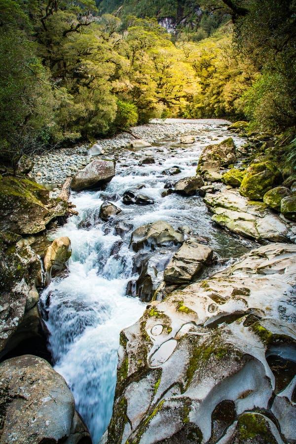 Cachoeira de Nova Zelândia perto de Milford Sound fotografia de stock