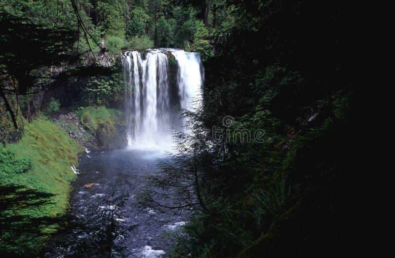 Cachoeira de Oregon fotografia de stock royalty free