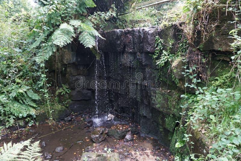 Cachoeira de Rockwall fotos de stock