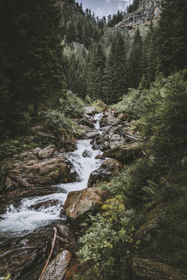 Cachoeira de Saent no alto adige do trentino imagem de stock