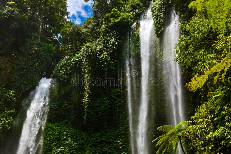 Cachoeira de Sekumpul - ilha Indonésia de Bali imagem de stock royalty free