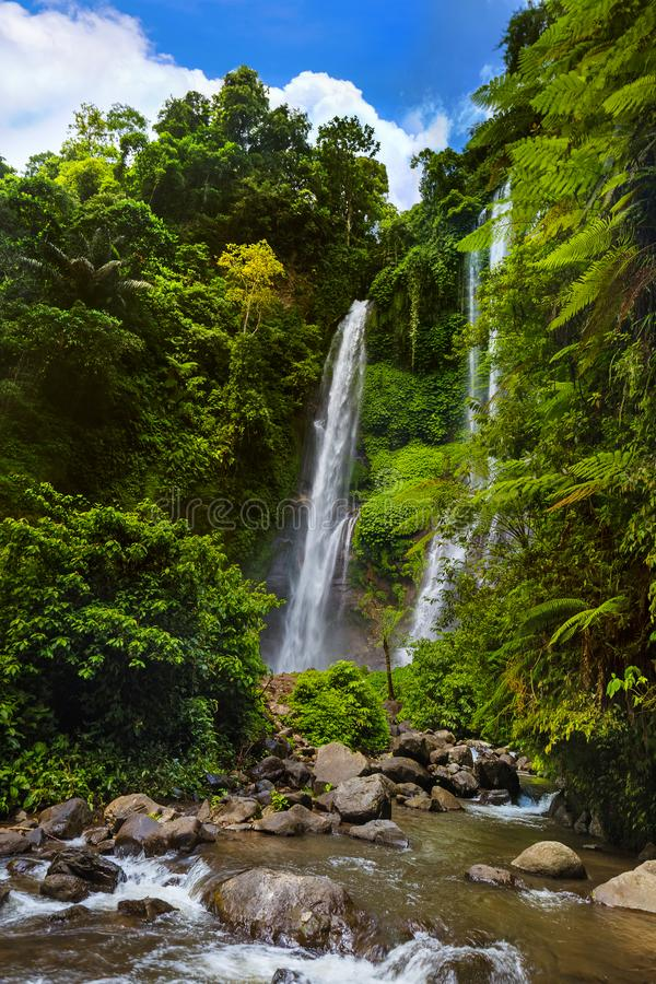 Cachoeira de Sekumpul - ilha Indonésia de Bali fotografia de stock royalty free