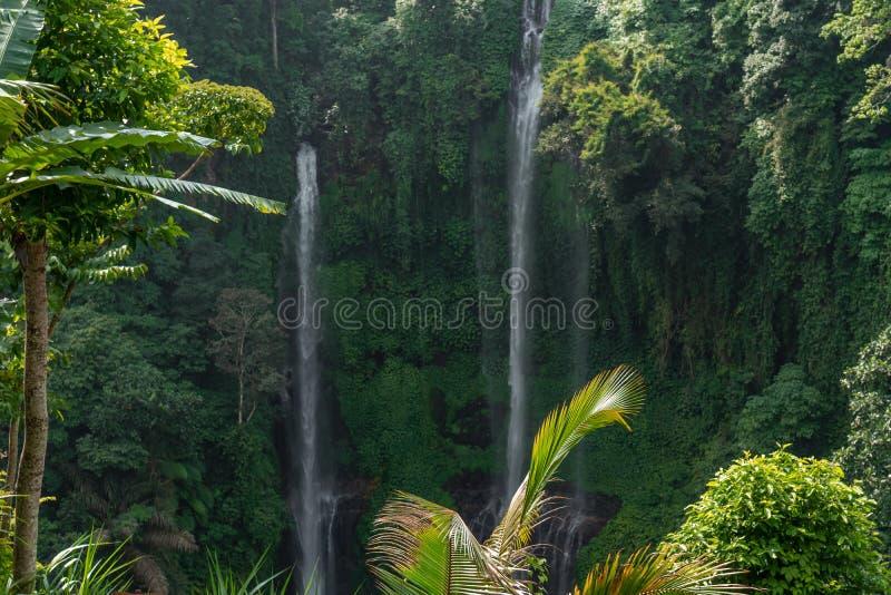 Cachoeira de Sekumpul na floresta úmida verde da ilha de Bali, Indonésia imagens de stock royalty free