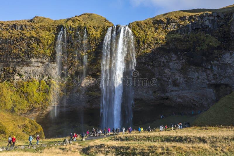 Cachoeira de Seljalandsfoss em Islândia do sul fotografia de stock royalty free