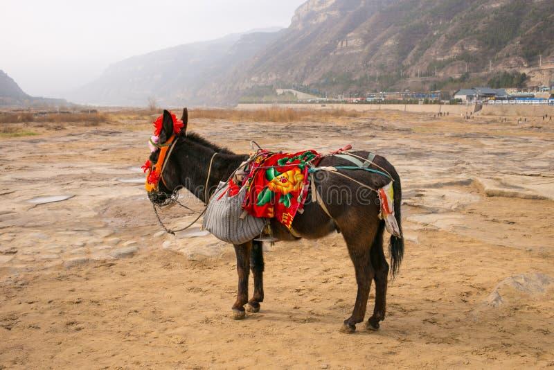 A cachoeira de Shanxi, China - o Rio Amarelo Hukou fotos de stock royalty free