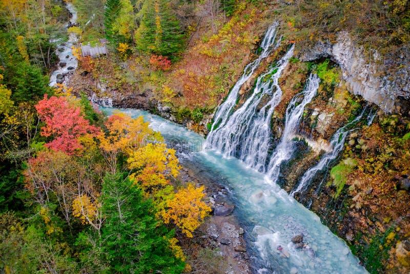 Cachoeira de Shirahige na queda e no Autumn Season, Hokkaido, Japão imagem de stock royalty free