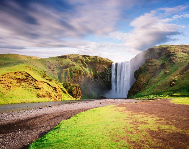 Cachoeira de Skogafoss em Islândia no verão fotografia de stock royalty free