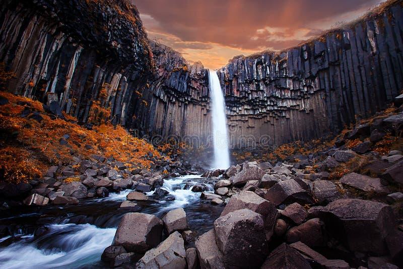 Cachoeira de Svartifoss em Islândia imagens de stock royalty free