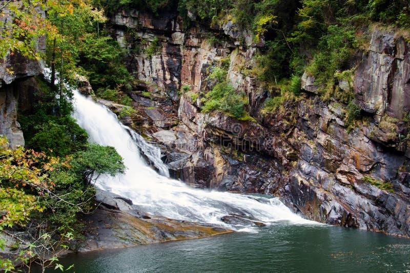 Cachoeira de Tallulah Gorge Bridal Veil, Geórgia imagem de stock