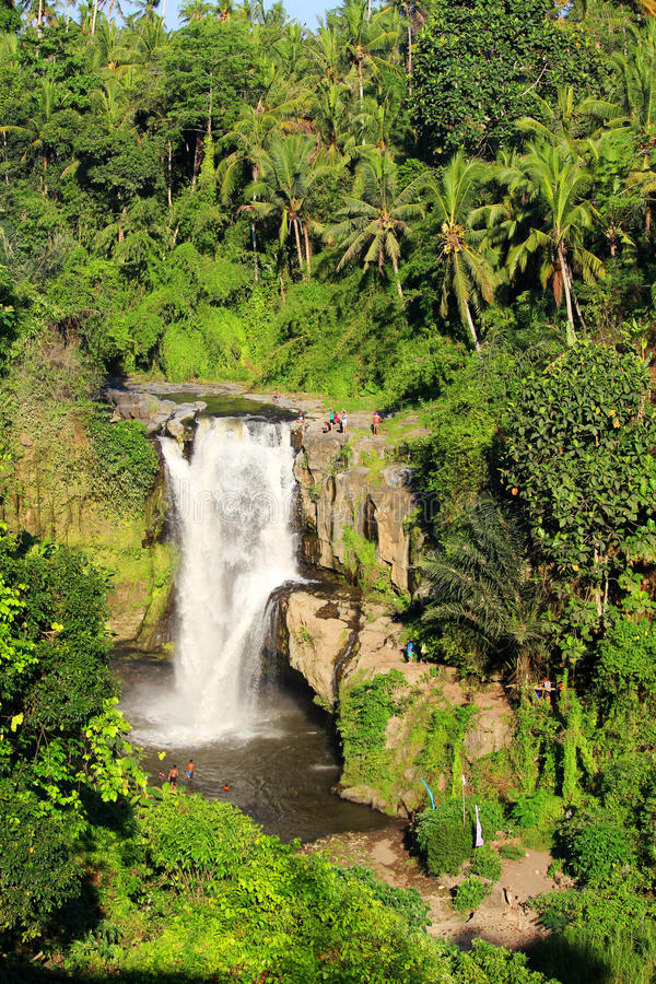 Cachoeira de Tegallalang foto de stock