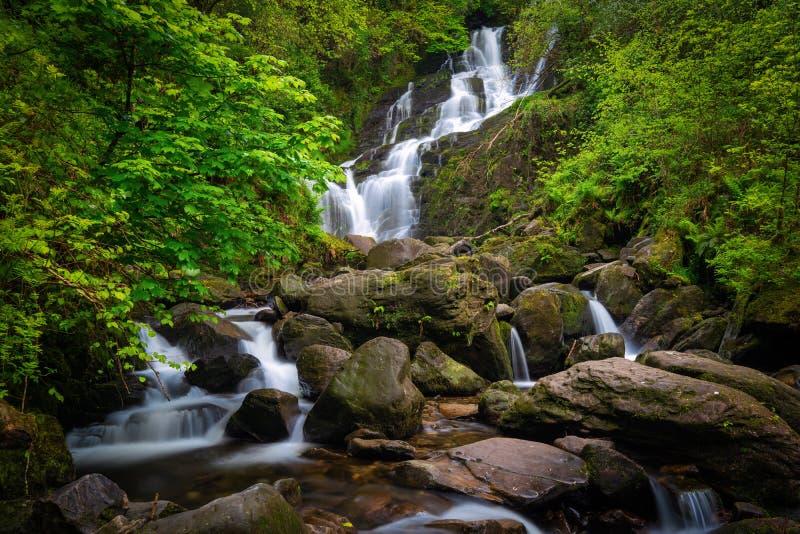 Cachoeira de Torc, Kerry nacional de Killarney Park County, Irlanda fotografia de stock royalty free