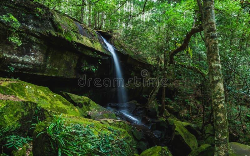 Cachoeira de Yai do Tum em Phukradueng, província de Loei, parque nacional em Tailândia imagens de stock