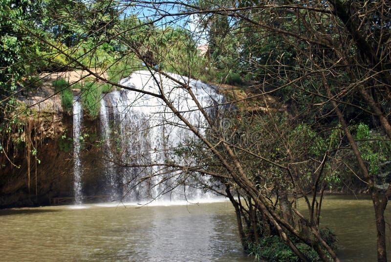 Cachoeira dentro entre os arbustos imagens de stock royalty free