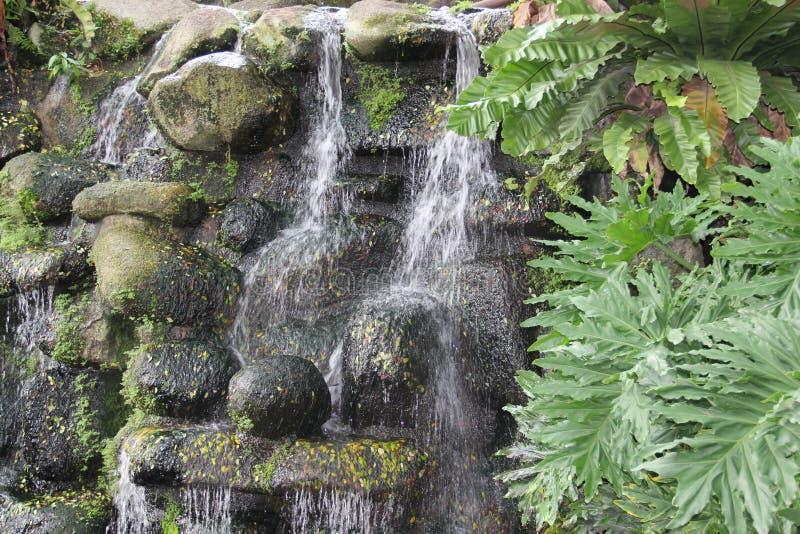 Cachoeira diminuta foto de stock