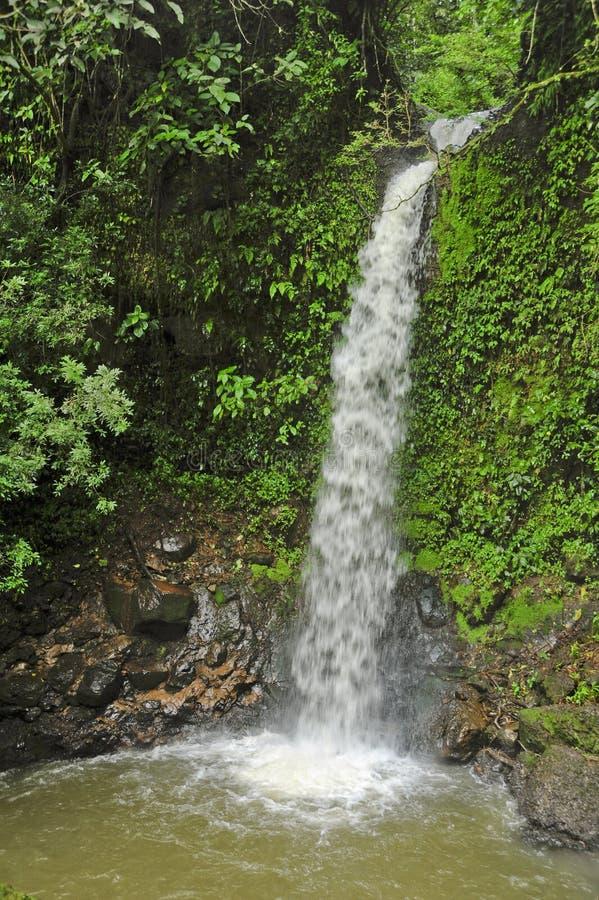A cachoeira do arco-íris, igualmente conhecida como a íris de Catarata Arco, é o terço de cinco cachoeiras em cachoeiras do fresc imagens de stock royalty free