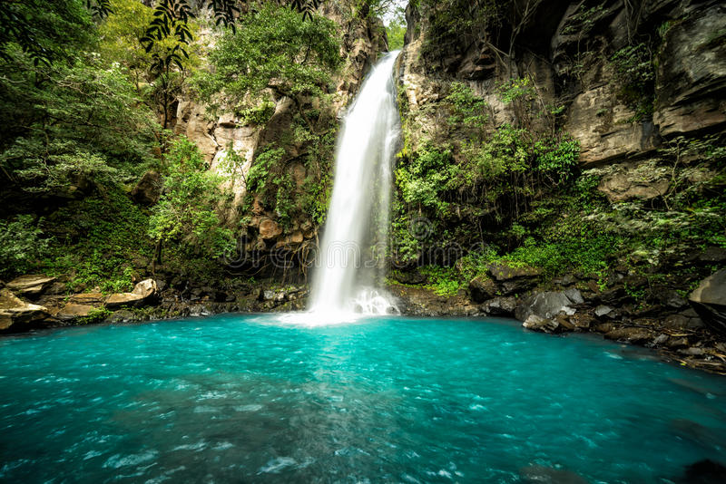 Cachoeira do ` de Cangreja do La do `, Costa Rica Uma cachoeira pristine bonita nas selvas da floresta úmida de Costa Rica foto de stock