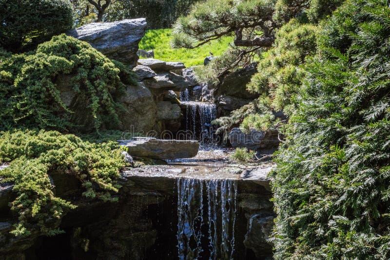 Cachoeira do jardim imagem de stock
