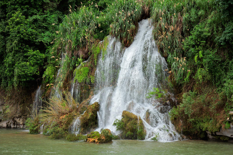 cachoeira do Li-rio foto de stock